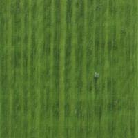 Belinka Toplasur UV 19 zelená